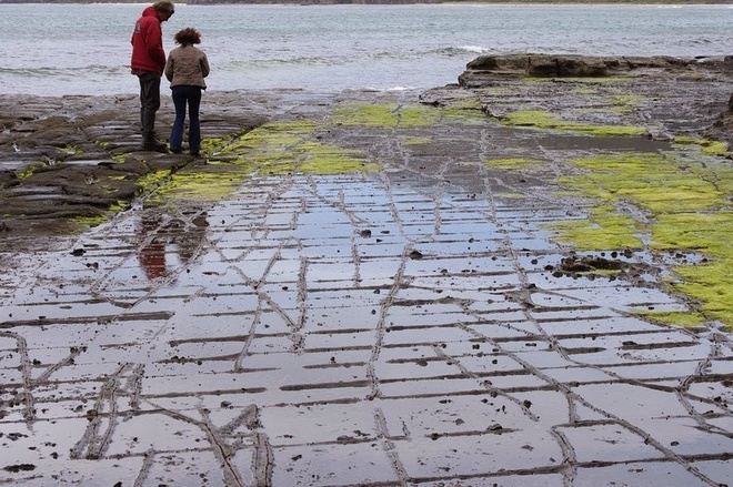 tessellatedpavement42