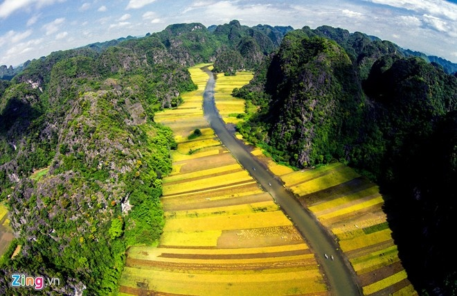 The best places to see ripening rice fields